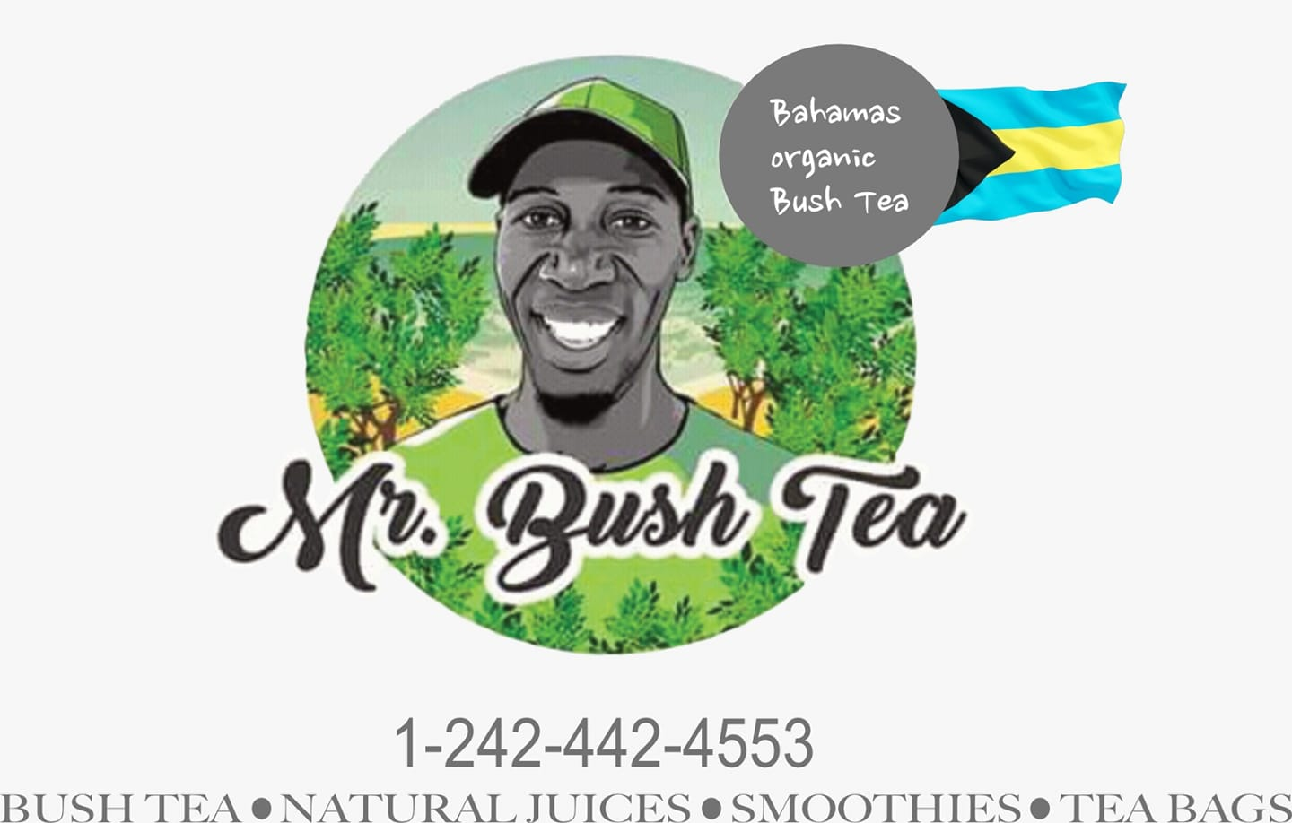 Mr Bush Tea